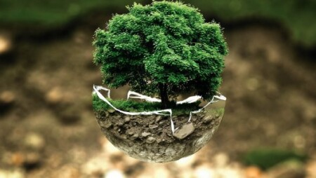 Παγκόσμια Ημέρα της Γης: Μόλις το 2,8% των οικοσυστημάτων του πλανήτη παραμένει ανέπαφο